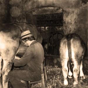 Foto storiche – La famiglia Spinelli al lavoro